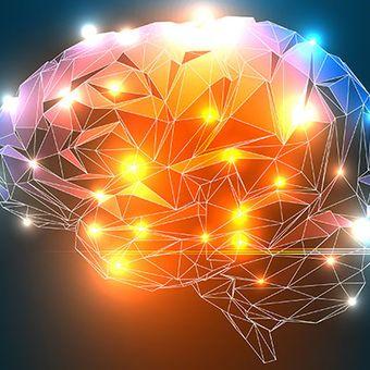 Чего хочет мозг: нейрофизиология потребностей