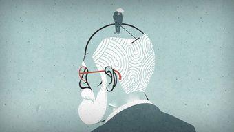 Не Фрейдом единым: подходы в психологии