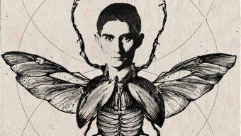 Мир Франца Кафки