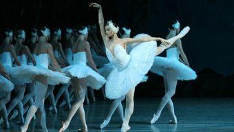 Как понять балет: от па-де-де до Петипа