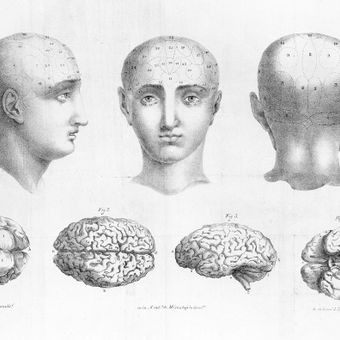 «Химия мозга: от медиаторов до психоделиков» в доме Спиридонова