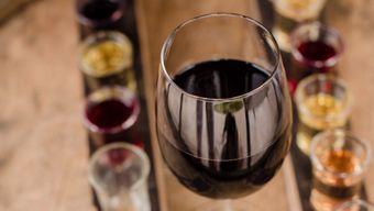 Практическое занятие в винотеке SimpleWine