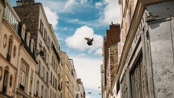 Франция: Мельес, Клер, Годар, Лелуш, Жёне